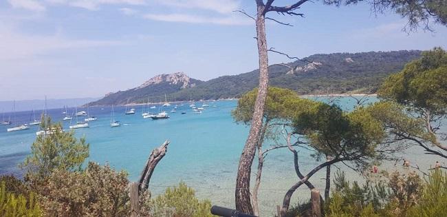 cette image represente une vue mer faune flore de la presqu'ile de giens.Ciel bleu, mer bleue.Pins parasols. Baigneurs.Bateaux.